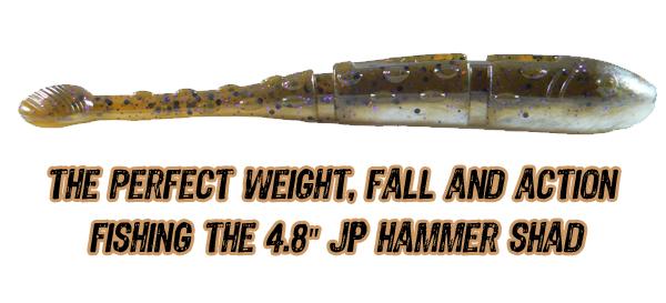 "4.8"" JP Hammer Shad"